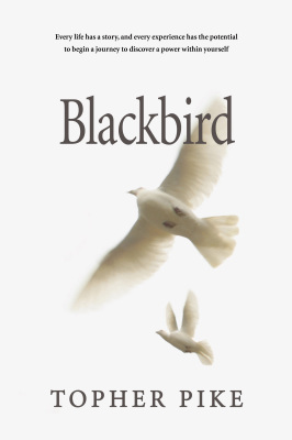 Blackbird - Chapter 3